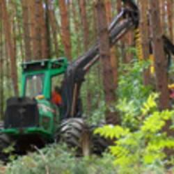 Landschafts- und Gartenbau Stackelitz GmbH